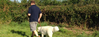 about hopton boarding kennels